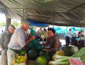 Mercado 5_1